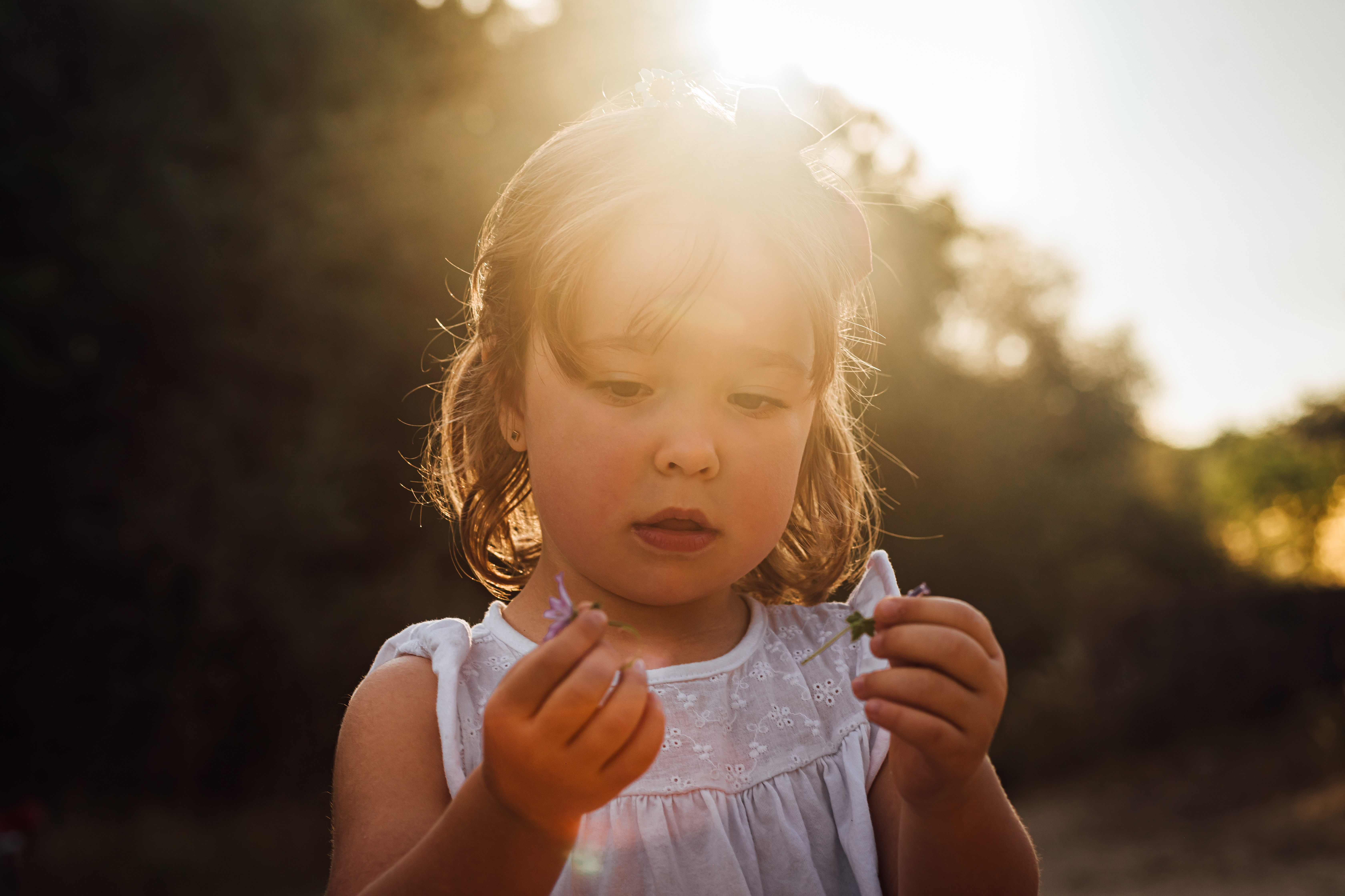 Portrait of a little girl picking a flower with the sun in the background